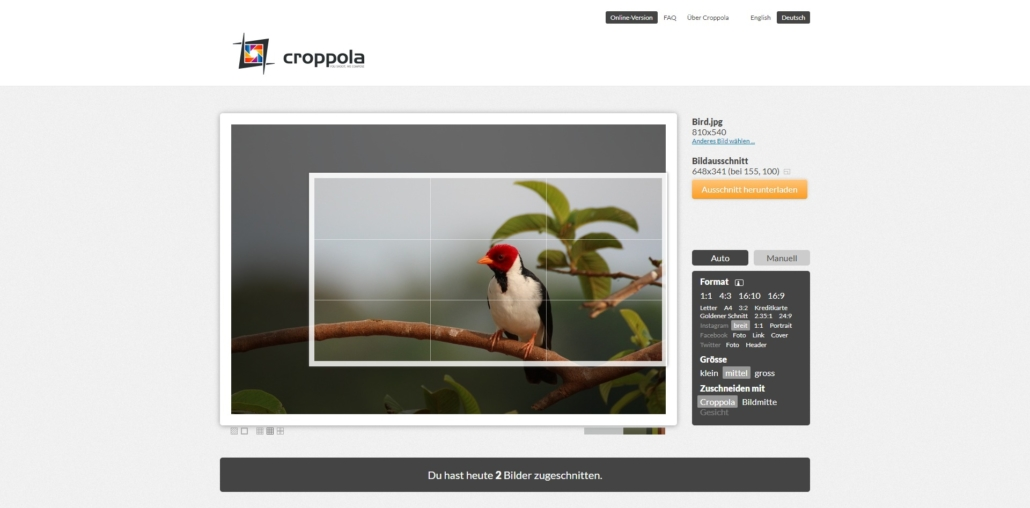croppola.com Image Cropper Online Photo Cropping Software